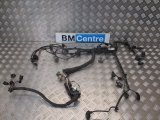 BMW F30 3 SERIES 2011-2017 ENGINE WIRING LOOM 2011,2012,2013,2014,2015,2016,2017BMW F30 F31 3 SERIES 320D ENGINE WIRING HARNESS N47D20C 8507899 8507899