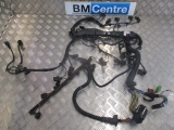 BMW F30 3 SERIES 2011-2018 ENGINE WIRING LOOM 2011,2012,2013,2014,2015,2016,2017,2018BMW 3 SERIES F30 330D ENGINE WIRING HARNESS LOOM